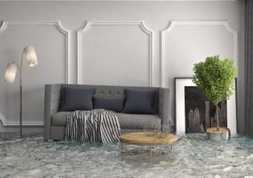 Carpet restoration after water damage