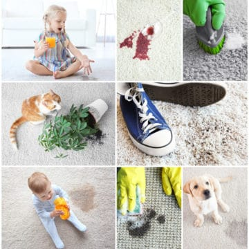 Carpet stains don't have to be a problem, Elite carpet stain removal can remove most stains and odours