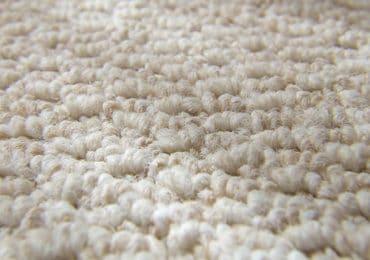 freshly cleaned carpet