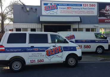 elite mackay carpet cleaning and pest control services