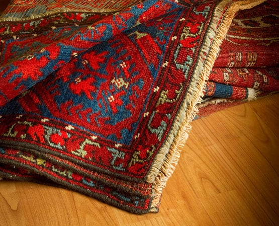 family with clean rugs, carpet and upholstery