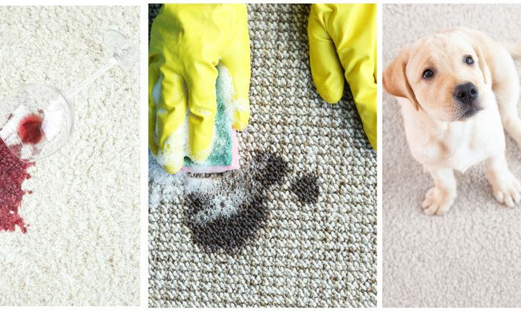 super spotta stain remover