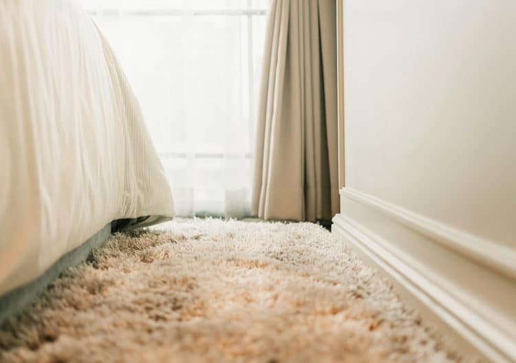 How often should i get my carpets dry cleaned - keep your carpet fresh with regular carpet dry cleaning