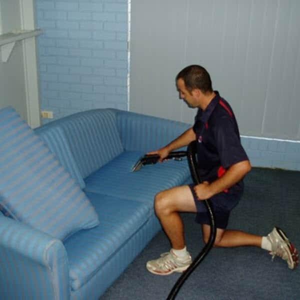 carpet dry cleaner