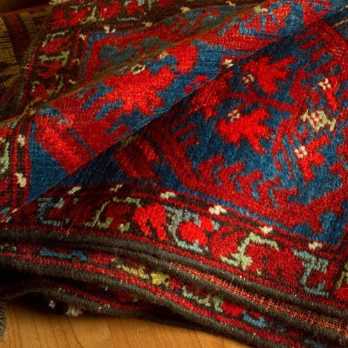 Expert rug dry cleaning in Colmslie
