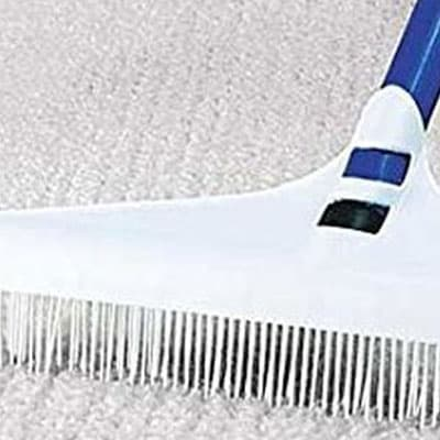 Post treatment groom carpet cleaning in Balmoral