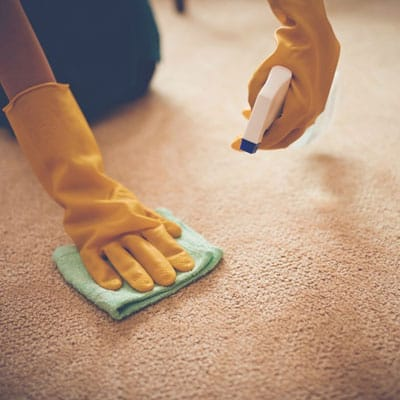 Stain treatment carpet cleaning Balmoral